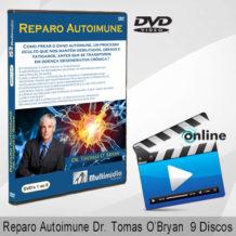 site-box-grande-ReparoAuto-ThomasOK
